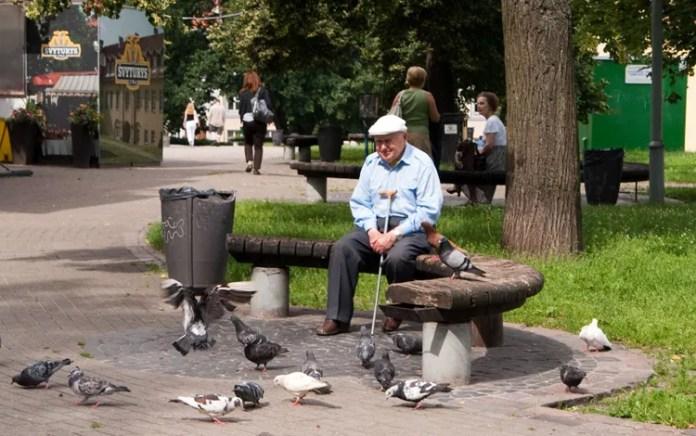 Od 1 stycznia 2020 roku emerytury wzrosną o 33,5 euro