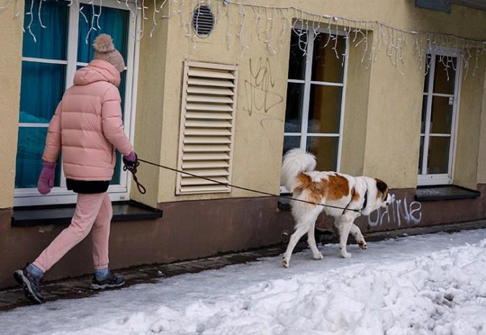 Chodniki w stolicy Litwy zapachniały kawą