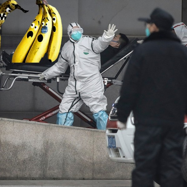 По мессенджерам полетели сообщения про смерть, бананы и вирус n7n9 в Китае