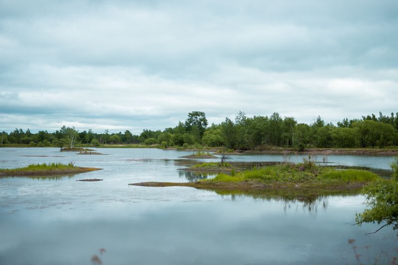 Уровень воды в ручьях Красавчик, Буркале и восьми малых реках ЕАО поднялся из-за дождей