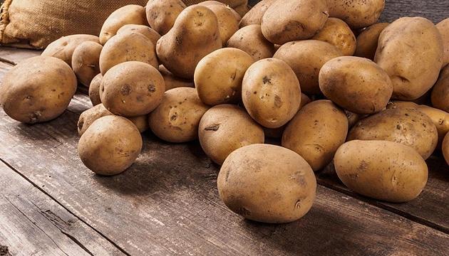 Еврейское УФАС заявило, что цены на картофель в России не подлежат госрегулированию