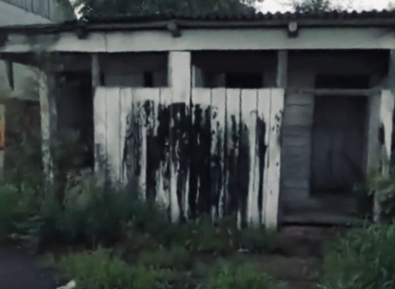 На Кирова 29 в поселке Смидович рай для вуайеристов – уличный сортир без дверей