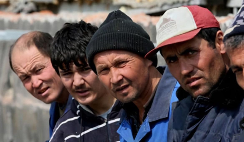 В 2020 году в ЕАО приехало в девять раз меньше иностранцев чем в прошлом году