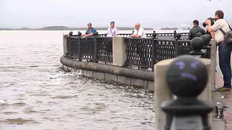 В Гидрометцентре заявили о рекордных значениях объема воды в Амуре за весь период метеонаблюдений