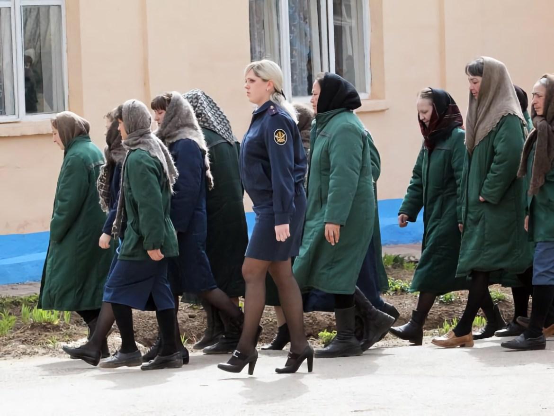 Жительницу Смидовичского района отправили в колонию на 28 дней