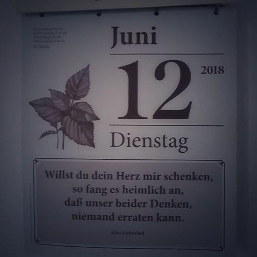 Dienstag, 12.06.2018, Kalender, Spruch, 12von12