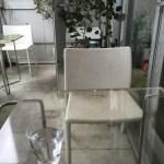 イズム ドッグカフェ
