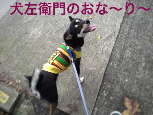 犬 永谷園