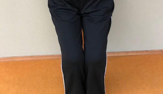 【筋トレ】手軽にできるカンフー式太腿の筋トレ・馬歩の応用(大腿四頭筋)