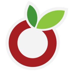 The OurGroceries app logo