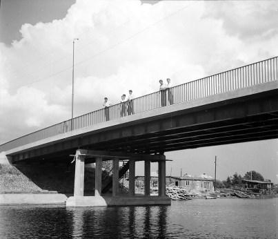 1960-te_netta (1)