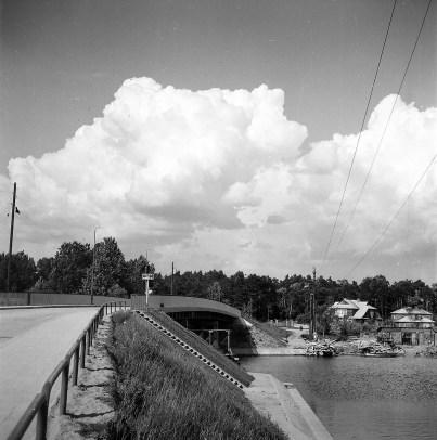 1960-te_netta (6)