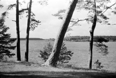 1960_Necko (1)