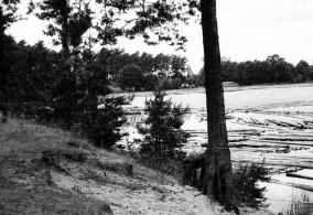 1966_07_prace-ogrod__lipowiec_biale (26)