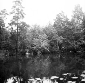 1972 (1)