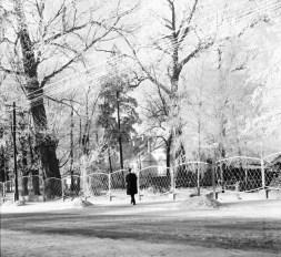 1965_szron_kanal (1)