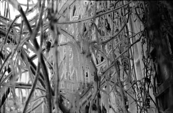 1969_zimowe_fantazje (13)