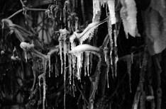 1969_zimowe_fantazje (6)