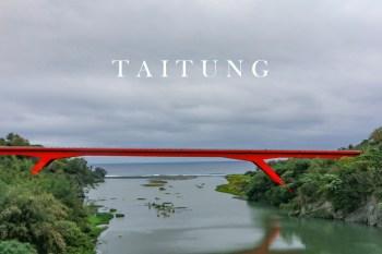 台東景點 東河舊橋與新橋 台灣獼猴發呆的領地
