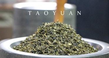 桃園農遊券合作業者推薦 桃園茶廠喝茶逛老街