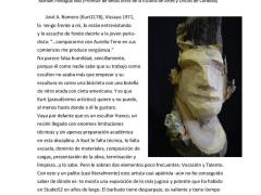El Periódico, Diario de Córdoba