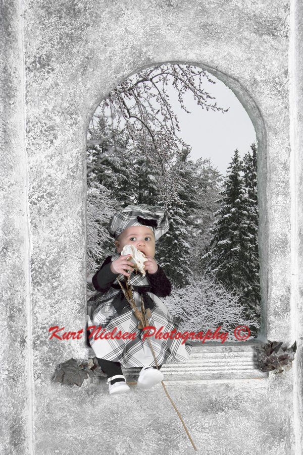 Winter Wonderland Photographer Toledo
