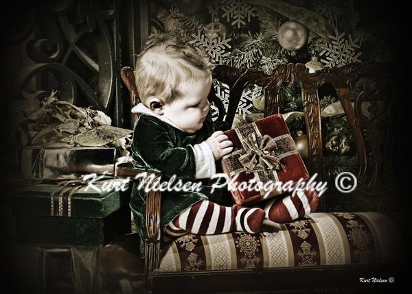 unique Christmas Card Photographer in Toledo
