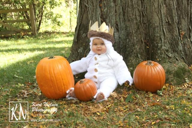 halloween photographer in toledo