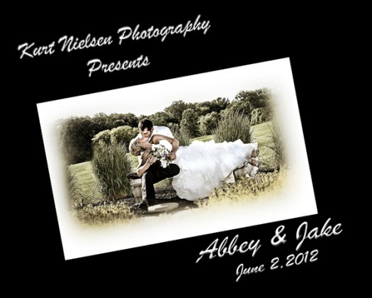 Toledo Wedding Photographer 11