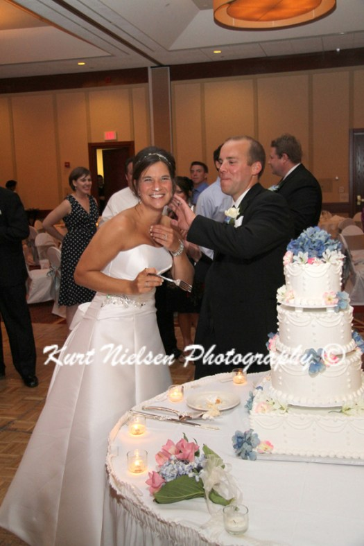 wedding cake cutting picture