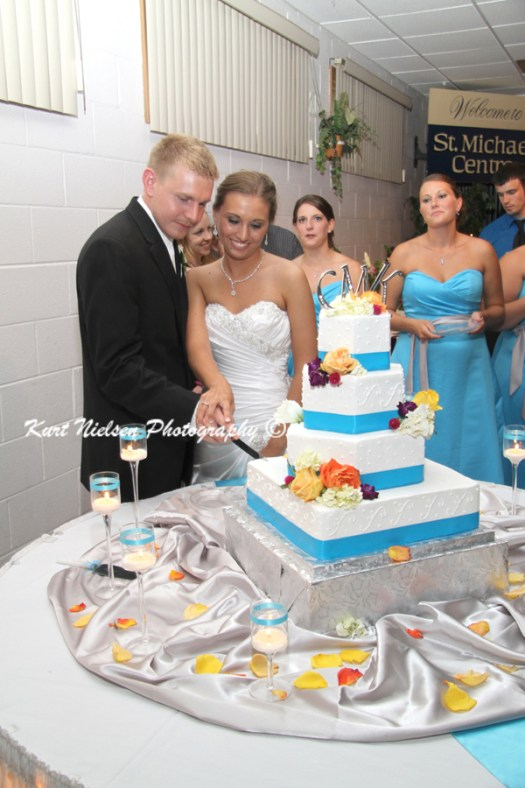 wedding cake cutting photos