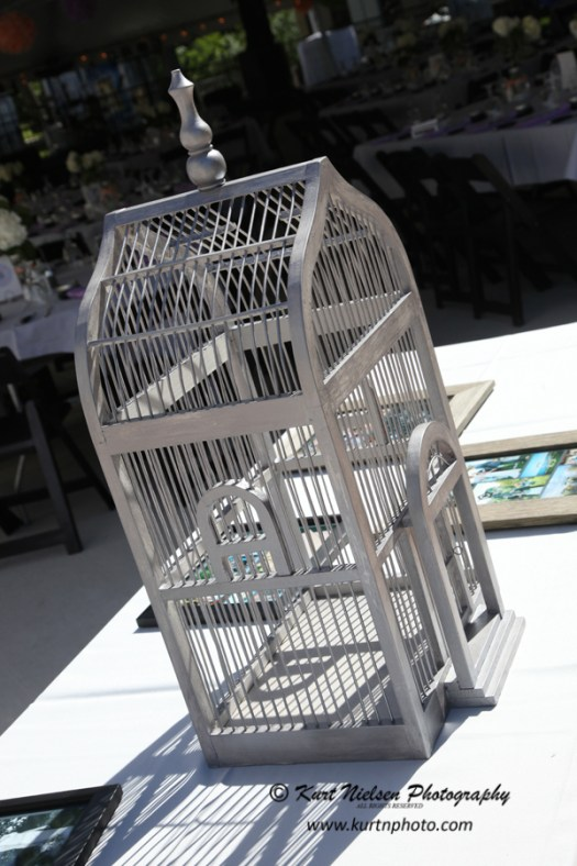 bird cage for wedding