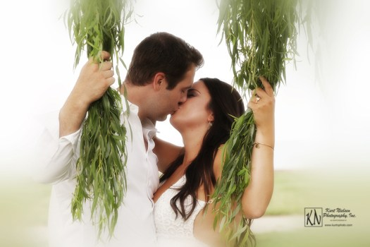 weeping willow engagement photos