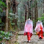 坂の途中にある大門坂茶屋では、平安衣装をレンタルしている。衣装は子供用から男性用まで揃っており、着付けも簡単。※前日までに予約要 大門坂茶屋(0735-55-0244)