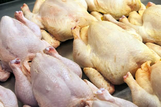 ricette di pollo dieta cardiaca