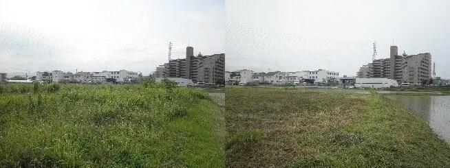2000平米以上もある大阪市内の空き地の草刈りビフォーアフター