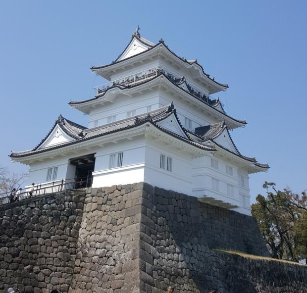 小田原城に行ってみた【観光レポ】