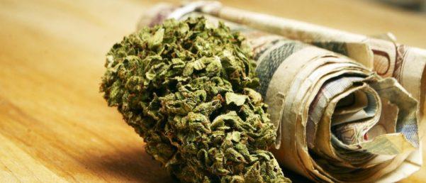 Marijuana-and-Cannabis-Buds-and-Money-Drug-Business-e1462389680341