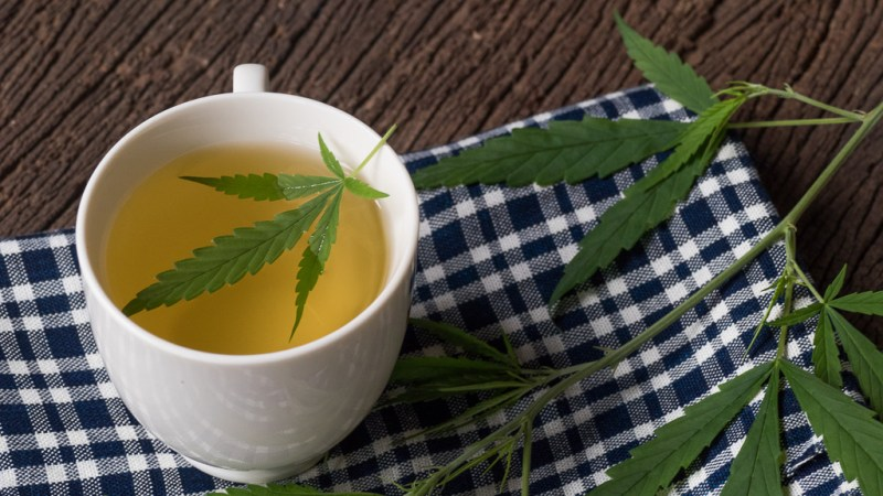 cannabistea