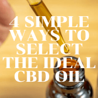 4 Simple Ways to Select the Ideal CBD Oil