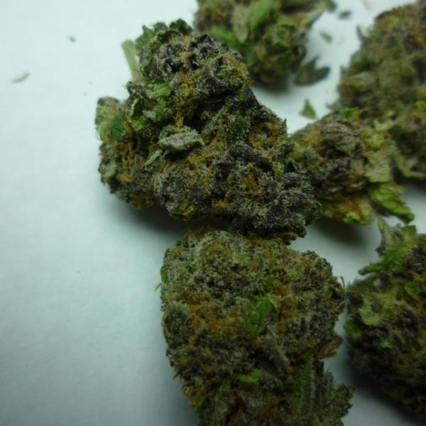 Purple Girl Scout Cookies