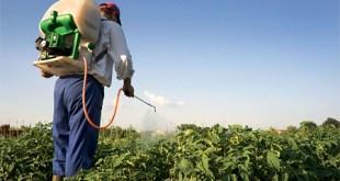 كيفك استخدام المبيدات الحشرية الأمنه