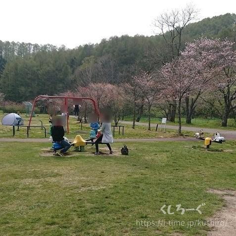 釧路町にある別保公園の遊具