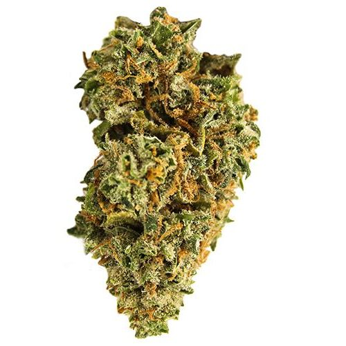 Sativa-Dominant RISE (GREEN EXTREME) by Cove THC 16-26% CBD 0-1%