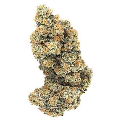 Indica-Dominant GABRIOLA (FROST MONSTER) by Broken Coast Cannabis THC 14-24% CBD 0-1.99%