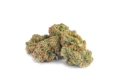Sativa-Dominant CHERRY BOMB - 3.5G by JC Green Cannabis Inc. THC 20-26% CBD 0-1%