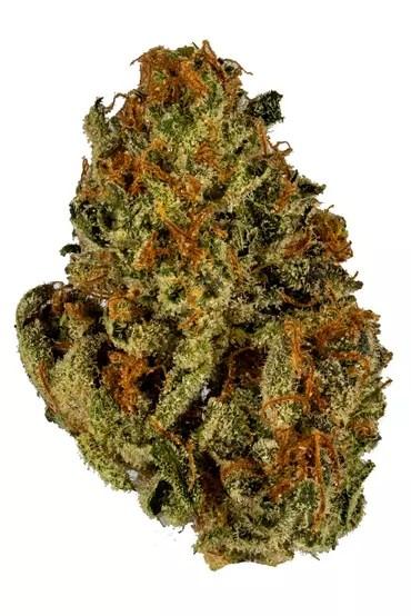Rainmaker Cannabis Strain For Sale