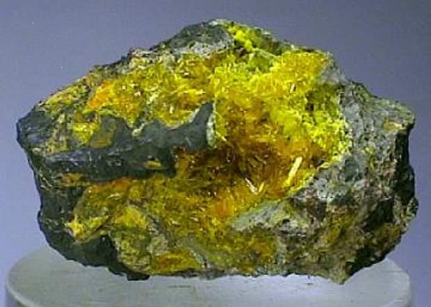 عرض الإستثمار في اليورانيوم بملتقى التعدين المقبل