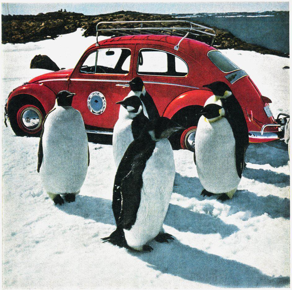 polar-bug-when-the-volkswagen-beetle-conquered-antarctica-1476934542639