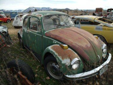 patina bug  120214 006